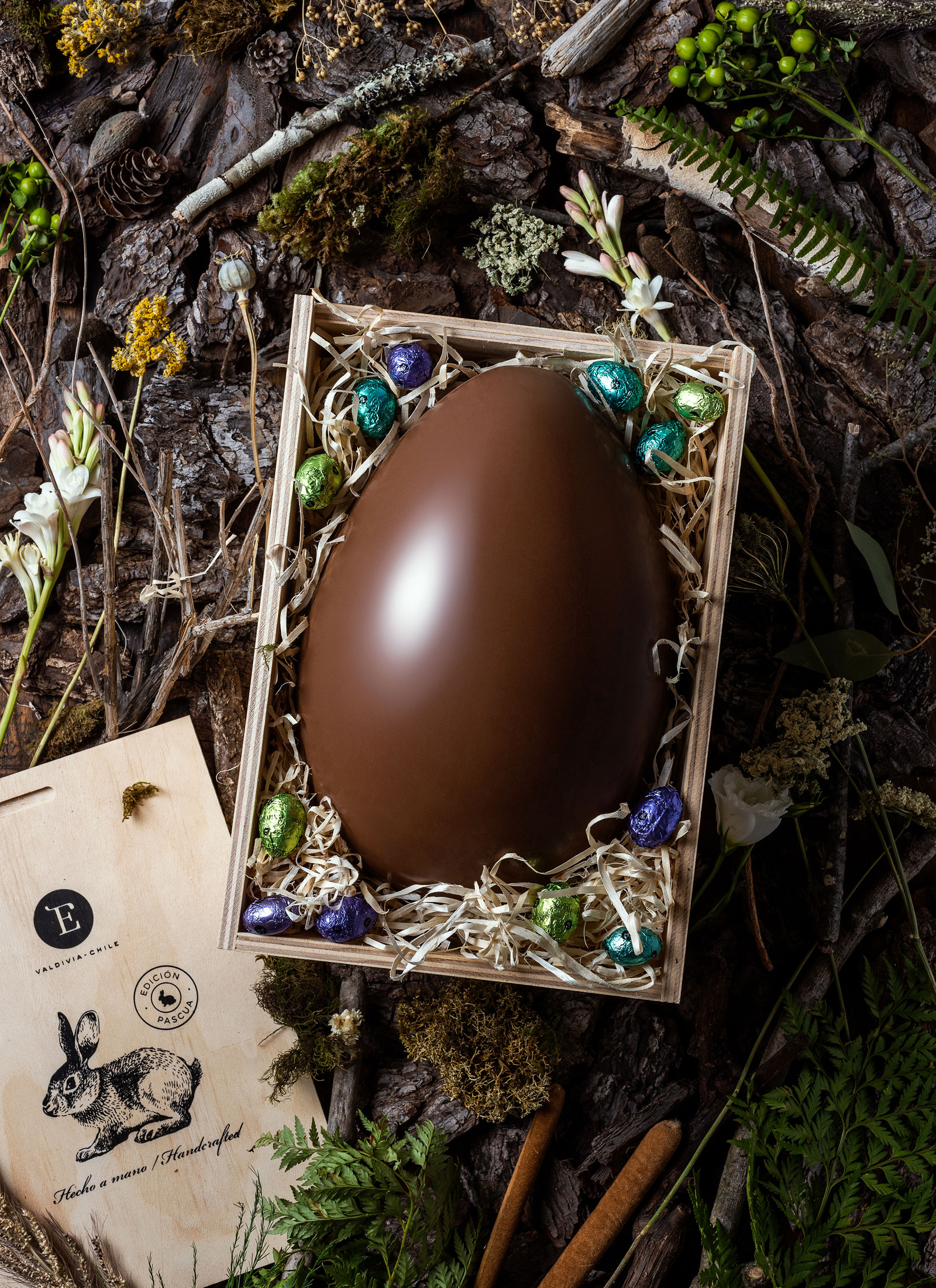 huevo-entrelagos-estudio-como